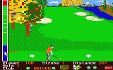 Mean 18 Atari ST Teeing off