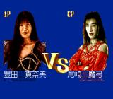 Super Fire Pro Wrestling Queen's Special TurboGrafx CD Match-up
