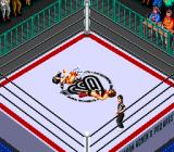 Super Fire Pro Wrestling Queen's Special TurboGrafx CD Ouch...