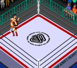 Super Fire Pro Wrestling Queen's Special TurboGrafx CD No, don't hug me, I'm not in the mood...
