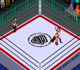 Super Fire Pro Wrestling Queen's Special TurboGrafx CD That must hurt...