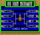 "Super Fire Pro Wrestling Queen's Special TurboGrafx CD ""One night"" mode"