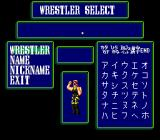 Super Fire Pro Wrestling Queen's Special TurboGrafx CD Creating and modifying the wrestlers