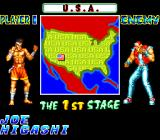 Fatal Fury Special TurboGrafx CD Match-ups also show the country of the opponent