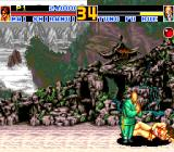 Fatal Fury Special TurboGrafx CD The master actually apologizes to the opponent after defeating her :)