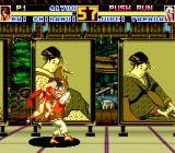 Fatal Fury Special TurboGrafx CD The two Japanese fighters are more interested in the battle than in the lovely art...