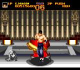 World Heroes 2 TurboGrafx CD ...and I broke it. But the old master got hit in the process...