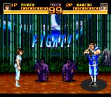 World Heroes 2 TurboGrafx CD Japanese scenario. My fighter bows politely