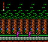 Castlevania II: Simon's Quest NES A forest with dangerous creatures walking around