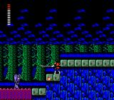 Castlevania II: Simon's Quest NES He doesn't seem to be impressed by my whip...