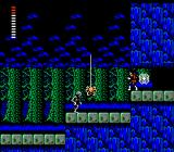 Castlevania II: Simon's Quest NES Spiders in a forest