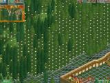 RollerCoaster Tycoon 2 Windows These white signs indicates I can buy that piece of land to further build my park.