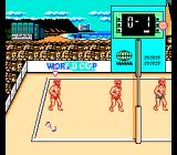 U.S. Championship V'Ball NES World cup game