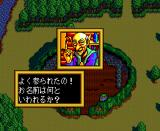 Mashō Denki La Valeur TurboGrafx CD Starting town. Talking to the elder
