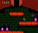 Super Contra NES Deadly plants