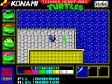 Teenage Mutant Ninja Turtles ZX Spectrum General area