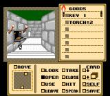 Shadowgate NES A book?