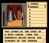Shadowgate NES Two bridges. Which one to take?