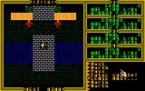 Exodus: Ultima III Amiga Entering a castle