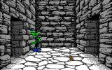 Willow Atari ST Entering the dungeon