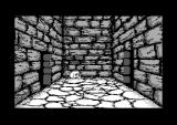 Willow Commodore 64 Entering the dungeons
