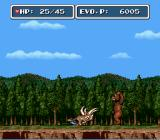 E. V. O.: Search for Eden SNES Bear walking by two legs