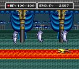 E. V. O.: Search for Eden SNES There are some deadlock branches of evolution. Such as mermaids