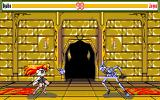 Sword Dancer: Goddess of the Evil Blade PC-98 Byatto takes on a fearsome skeleton