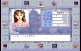 Karei naru Jinsei 2 PC-98 What to buy, what to buy...
