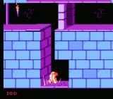 Prince of Persia NES Skewered