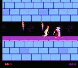 Prince of Persia NES About to be stabbed