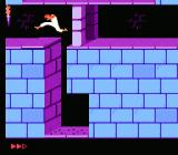 Prince of Persia NES Jumping a pit of spikes