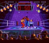 Best of the Best Championship Karate SNES Right body shot