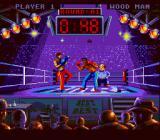 Best of the Best Championship Karate SNES Effects of a left high kick