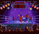 Best of the Best Championship Karate SNES Just kicked to the face