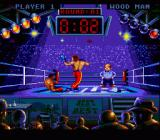 Best of the Best Championship Karate SNES Spin Punch into a knockout