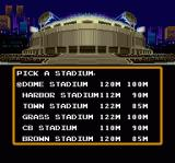 Super Baseball Simulator 1.000 SNES Pick a Stadium