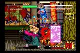 Samurai Shodown: Anthology Wii Samurai Showdown 2