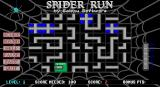 Spider Run DOS The start of a game. The spider starts in the green cell and the player must rotate the path in adjacent cels to build a road for it