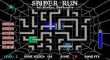 Spider Run DOS Start of level 2. There are bonus cells in this game.