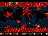 Blood Money Amiga Planet 4, even the smallest vines will kill you so don't touch them