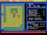 Ultima Trilogy: I ♦ II ♦ III FM Towns U1: oh wow, look, it's Lord British! :)