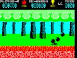 Hoppin' Mad ZX Spectrum This bug is worth 100 points
