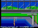 Olympic Gold: Barcelona '92 SEGA Master System Perfect form