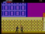 Shinobi SEGA Master System In close