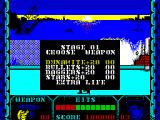 Shanghai Warriors ZX Spectrum When the character is positioned correctly and a specific key combination is pressed, an in-game sub menu is displayed