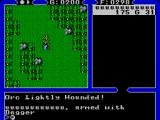 Ultima IV: Quest of the Avatar SEGA Master System Orc Lightly Wounded