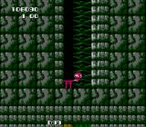 Rad Action NES Bonus level. Reach your goal or just enter this door like and admit you're a looser