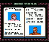 Tecmo World Wrestling NES Mark Rose & Julio Falcon
