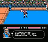Tecmo World Wrestling NES Backdrop on Rose